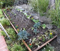 i built a raised garden bed by myself lou murray u0027s green world