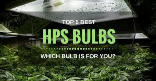 best hps grow lights top 5 best hps bulbs 2018 which bulb is for flowering