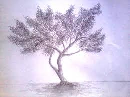 tutorial menggambar orang dengan pensil se pohon dengan pensil anitaikan s blog