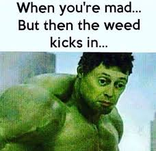 So You Mad Meme - 33 funniest hulk memes that will make you laugh hard