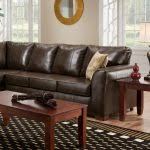 Houzz Sectional Sofas Home Accecories Houzz Living Room Sectional Sofas Euskal