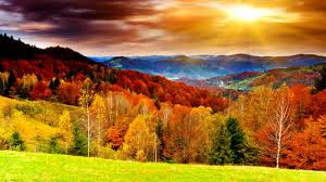 awesome bright autumn scenery wallpaper 1366x768 61883 employee
