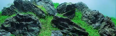 Aquascaping Rocks Hardscape