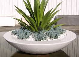 Modern Garden Planters 74 Best Pots And Planters Images On Pinterest Plants
