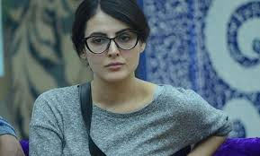 Top Controversies Of Former Bigg Boss Contestant Mandana - bigg boss 9 mandana karimi to leave the show midway bollywood