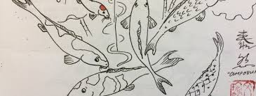 Different Koi Fish Meanings Koi Fish Meaning What Koi Fish Represent In Different Aspects