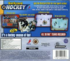 backyard hockey ds outdoor furniture design and ideas