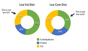 what you should know about low carb diets