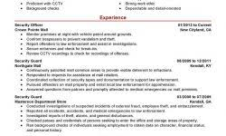 professional resume examples experience resumes