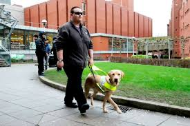 Blind Dog And His Guide Dog Uber Driver Refused Blind Man U0027s Guide Dog In Car Because It Was