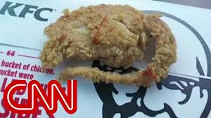 rat cuisine diner says there s a rat in kfc s chicken