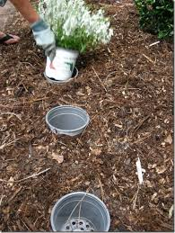 Garden Tips And Ideas 536 Best Gardening Tips Tricks Clever Ideas Images On Pinterest