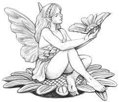 photos pencil drawings of fairies drawing art gallery