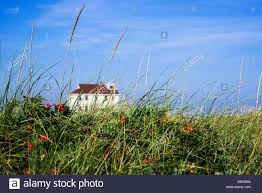 beach house with dune grass cape cod massachusetts usa stock
