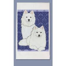 american eskimo dog varieties american eskimo dog breeds shop by pet