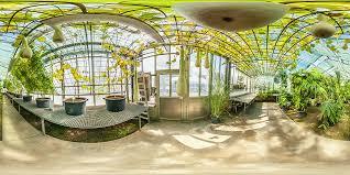 Tropische Pflanzen Im Garten Botanischer Garten Mainz Gewächshaus Tropische Nutzpflanzen