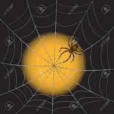 a spider web with spider on moonlight background royalty free