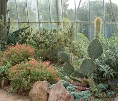 Edinburgh Botanic Gardens Cactus Picture Of Royal Botanic Garden Edinburgh Edinburgh