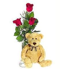 florist greenville nc delivering flowers bouquets and gifts in greenville nc the