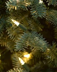 Fresh Christmas Trees Vancouver Wa by Bh Balsam Fir Narrow Artificial Christmas Tree Balsam Hill