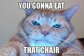 Meme Eat - you gonna eat that chair make a meme