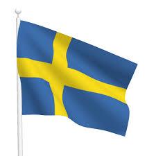 Sweden Flag Image Polyester Sweden Flag Light Duty Flags International