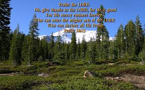 bible verses on thanksgiving and praise john 14 6 u2013 lion u0027s mane bible verses encouraging quotes and