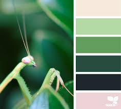 Green Color Palette by Color Creature Design Seeds