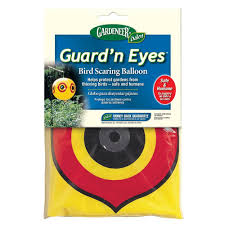 Scare Birds Away From Patio by Guard U0027n Eyes 10 5 In H Dalen Products Bird Scaring Balloon Te 12c