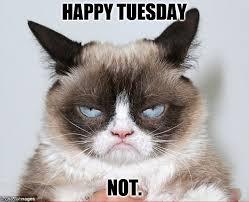 Happy Tuesday Meme - happy tuesday latest memes imgflip