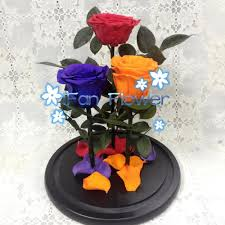 list manufacturers of rose only buy rose only get discount on