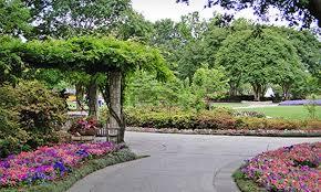 Dallas Arboretum And Botanical Garden Dallas Arboretum Flower Dallas Arboretum Dupe Groupon