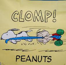98 best linus images on peanuts snoopy brown
