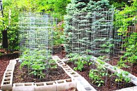 home vegetable garden design decorating ideas gyleshomes com