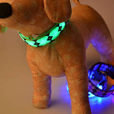 collar light for small dogs led small dog collar glow in the dark puppy night safety collar