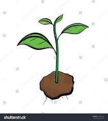 vector image growth little tree form stock vector 132723122