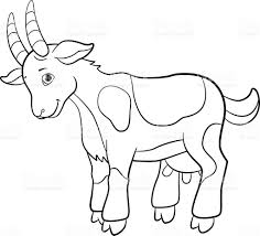 coloring pages farm animals cute goat stock vector art 564563486