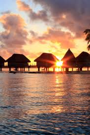 179 best bora bora images on pinterest dream vacations french