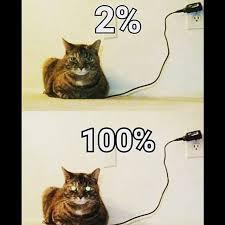 Playstation Meme - my cat is fully charged meme playstation advancedwarfare memes