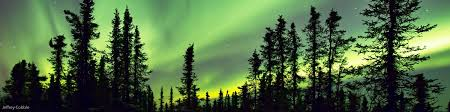 alaska vacation to see northern lights northern lights tours in alaska best aurora viewing vacations