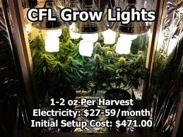 cfl grow lights for indoor plants growing cannabis with cfls starter shopping list grow weed easy