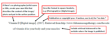 apa format online article no author fancy how to cite an online article with no author apa format on