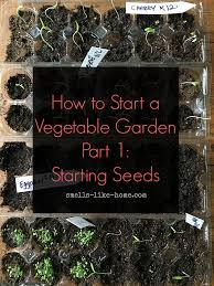 how to start a vegetable garden part 1 starting seeds smells