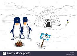 penguin melting ice sketch stock photo royalty free image