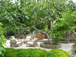 tropical landscape design stunning tropical garden design ideas
