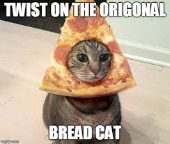 Cat In Bread Meme - pizza cat imgflip
