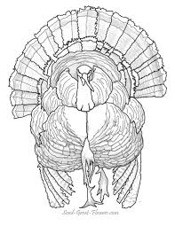 enjoy our free thanksgiving day coloring pages color
