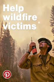 Wildfire Anderson Ca by Volunteers Help Pets Survive Amid California Wildfires U2013 In