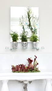 bathroom wallpaper high resolution plants for bathroom 2017