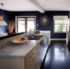 code couleur cuisine cuisine bleu gris canard ou bleu marine code couleur et ides pour